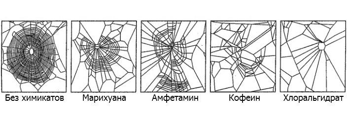 spiderdrugs01